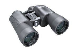 Bushnell PowerView 20x50
