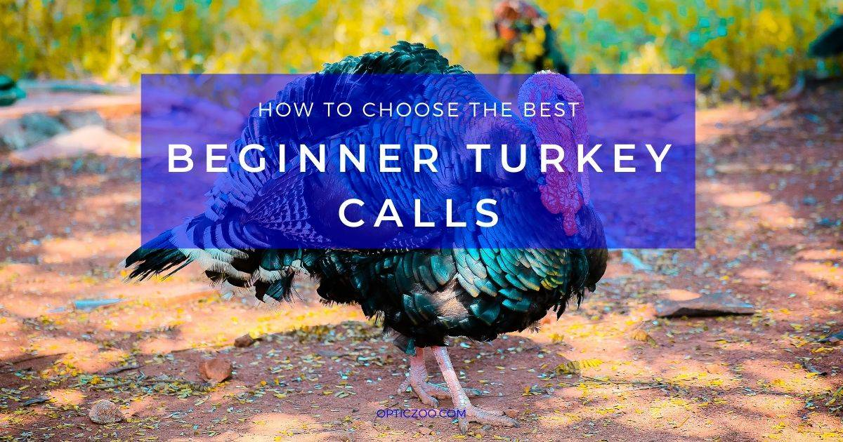 Best Beginner Turkey Calls - What is so exciting about turkey hunting? 1 | OpticZoo - Best Optics Reviews and Buyers Guides