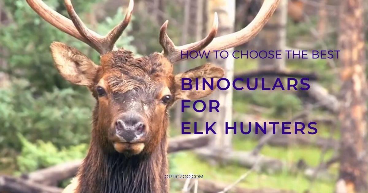 Best Binoculars For Elk Hunters - Buyer's Guide 1 | OpticZoo - Best Optics Reviews and Buyers Guides