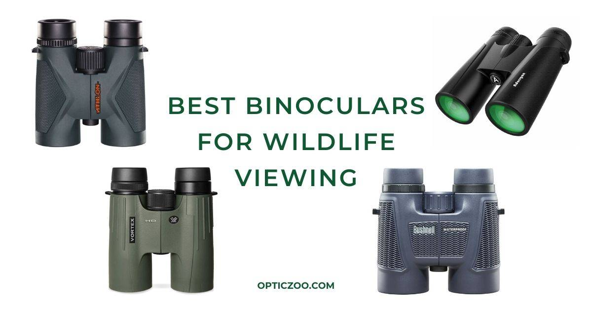 Best Binoculars For Wildlife Viewing - Buyers Guide 1 | OpticZoo - Best Optics Reviews and Buyers Guides