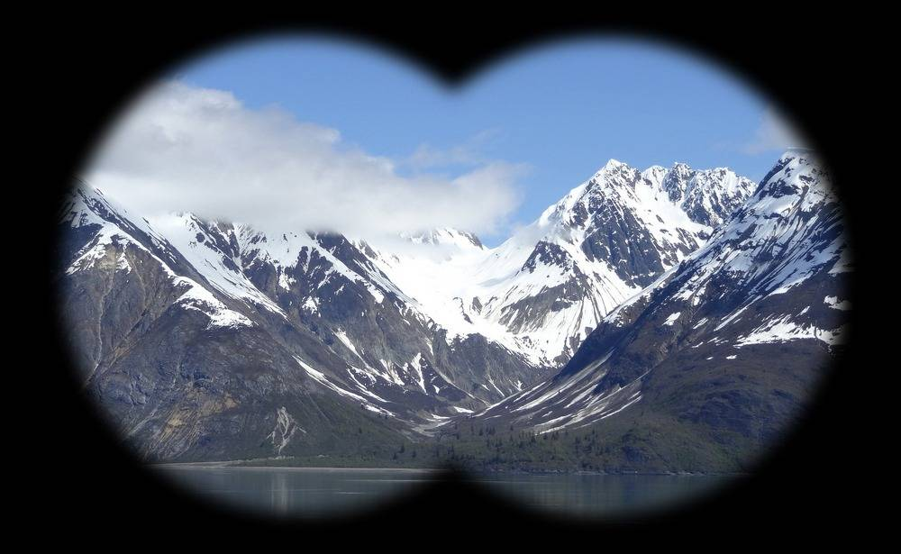 When choosing a bino for Alaska cruise, magnification of 10x or less is sufficient