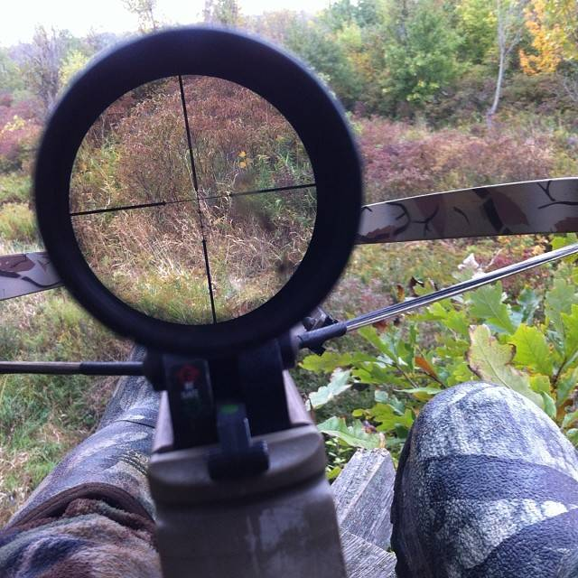For crossbow hunting, a 4x or 6x magnification is adequate