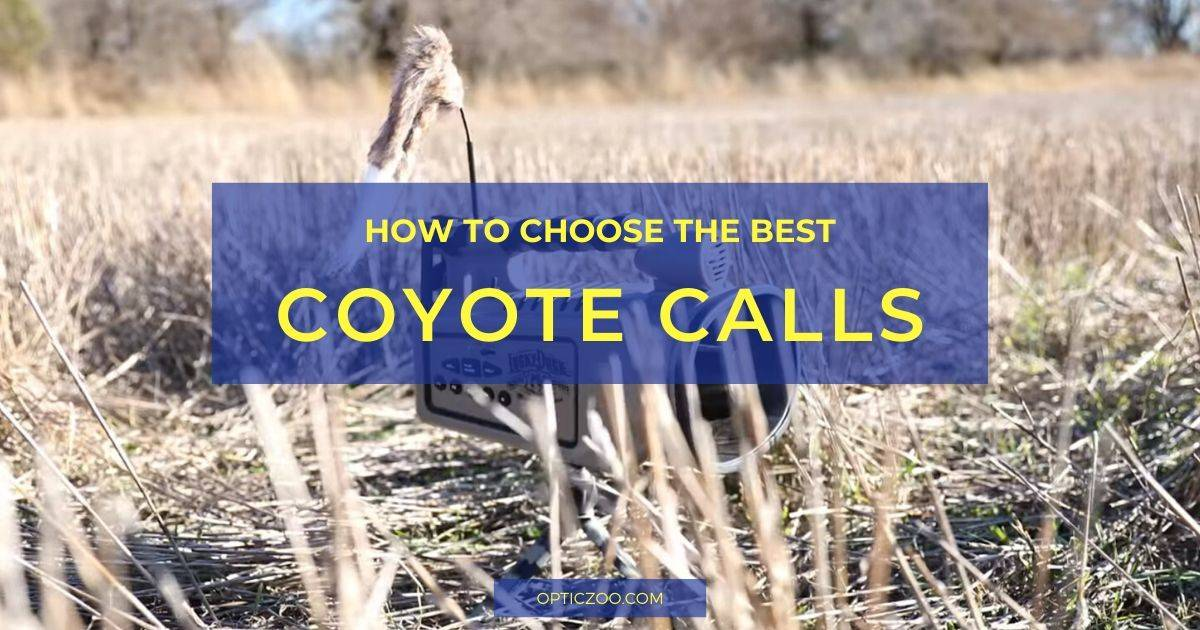 Best Coyote Calls - Buyer's Guide 1 | OpticZoo - Best Optics Reviews and Buyers Guides