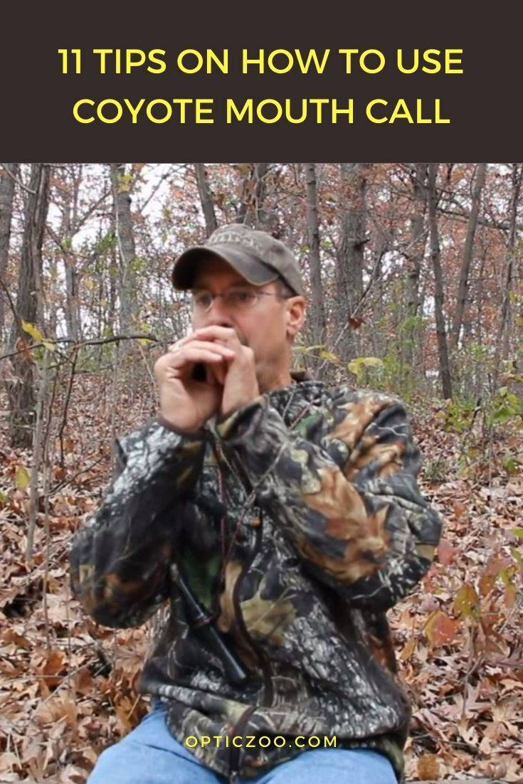 11 Tips on How to Use Coyote Mouth Call