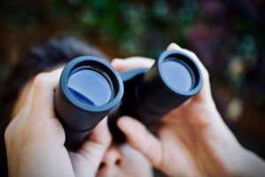 Best Binoculars 1 | OpticZoo - Best Optics Reviews and Buyers Guides