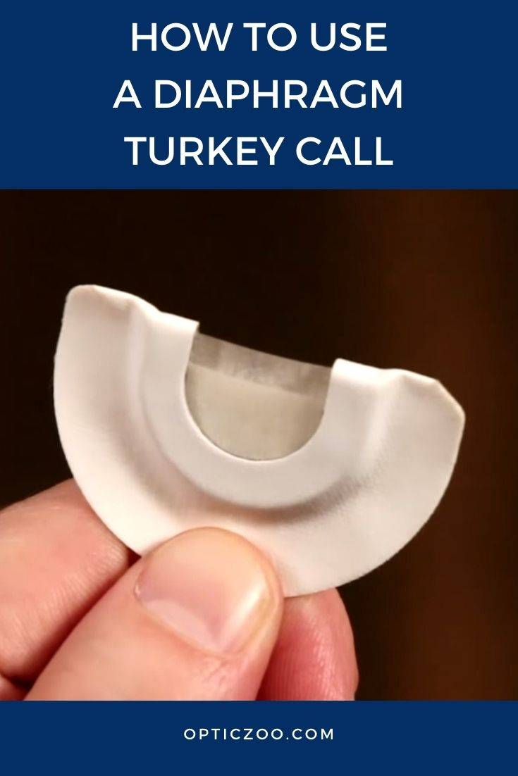 How to Use a Diaphragm Turkey Call